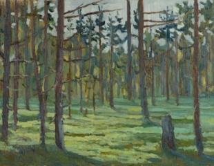 Хорошилова Елена Северный лес Кольский
